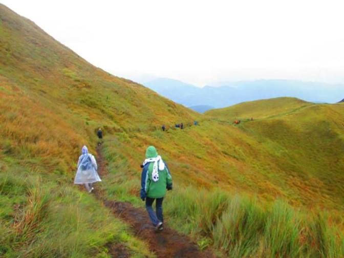 Mt. Pulag: Heaven at Hand